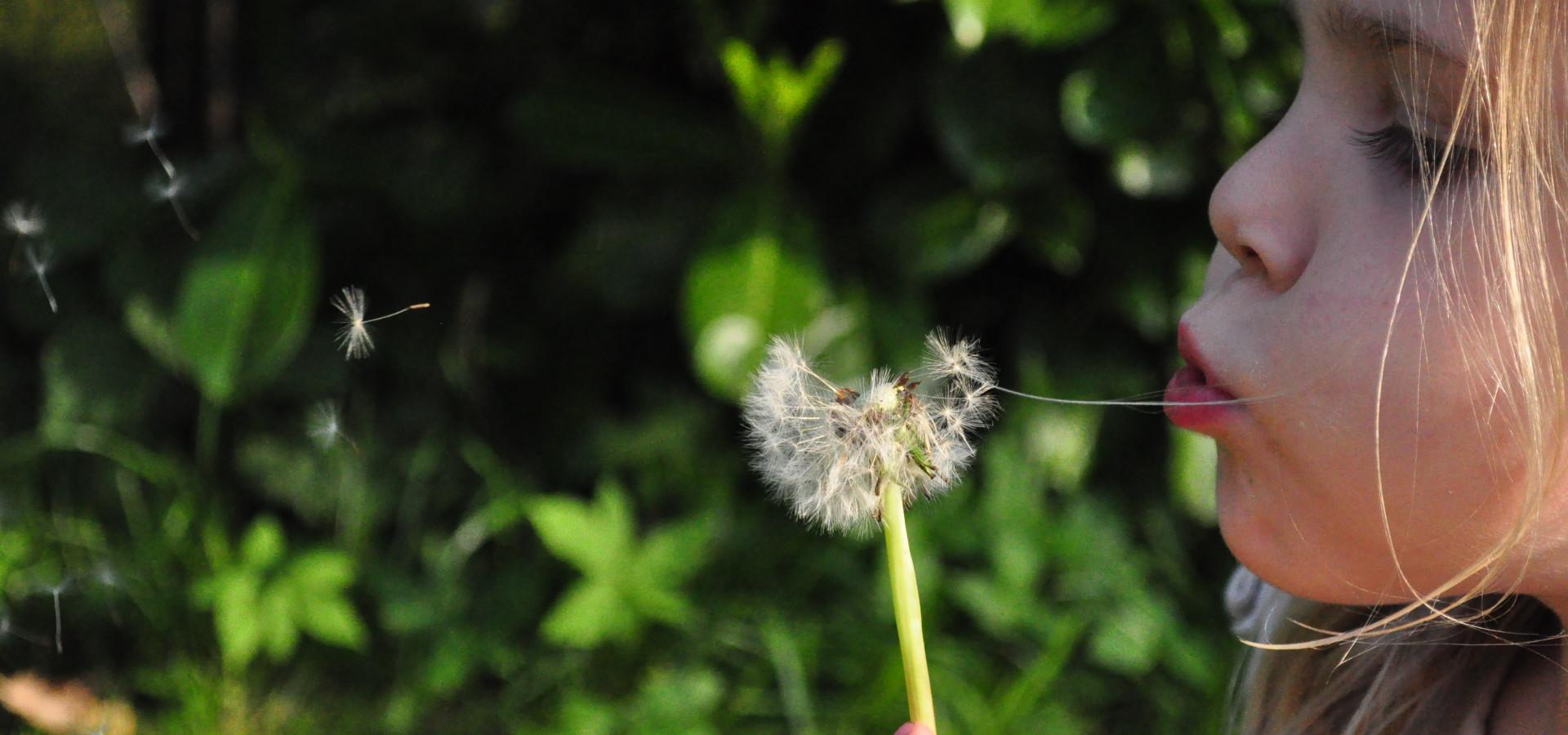 Magiczny Ogród - Aktywne, szczęśliwe życie!